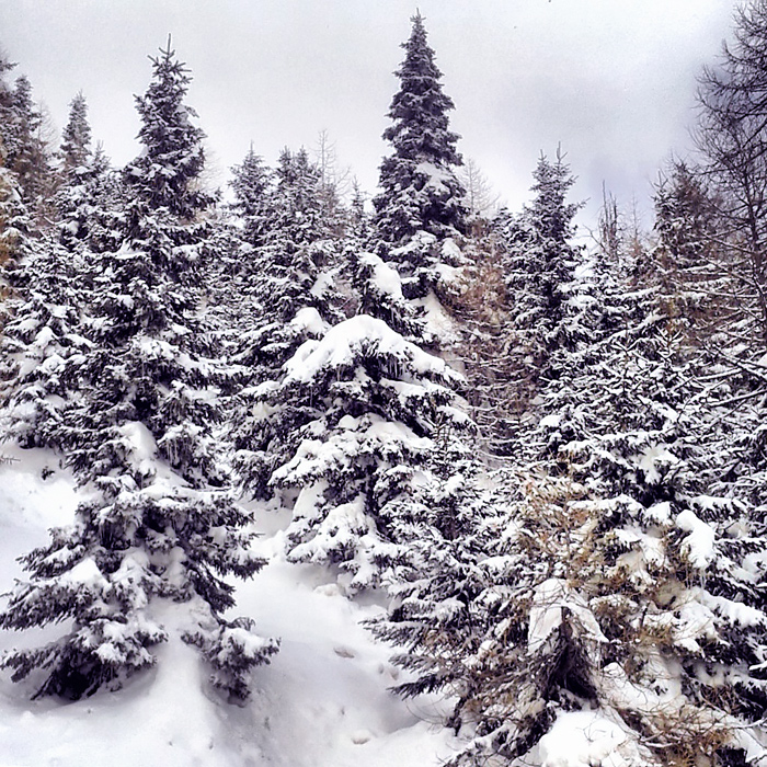 Marilleva, śniegu było dużo