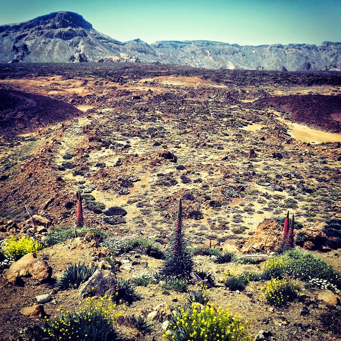 Krajobrazy wulkaniczne, Teneryfa