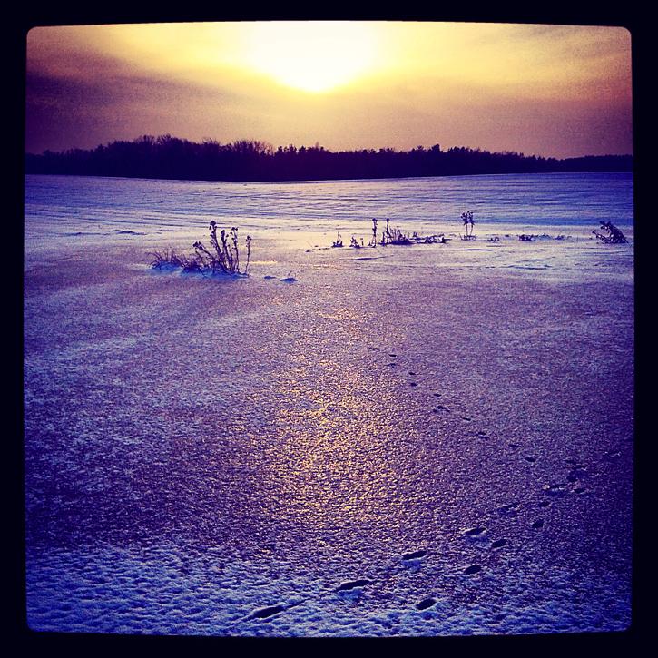 Zimowy widok, słońce, śnieg i zamarznięty staw