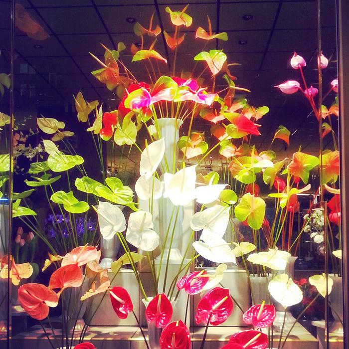 Kwiaciarnia w Łodzi