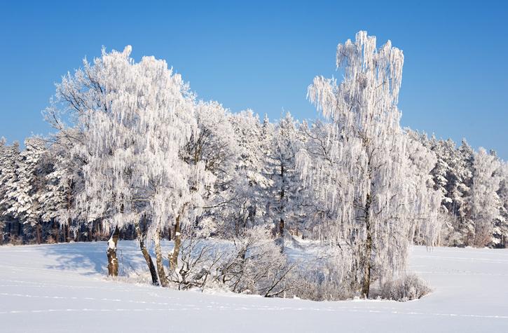 Zimowy plener fotograficzny