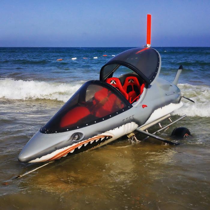 Rekin na plaży Słonecznym Brzegu