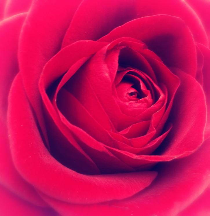 Obrazki Walentynkowe