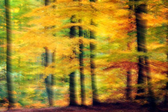 Jesień - obrazy abstrakcyjne