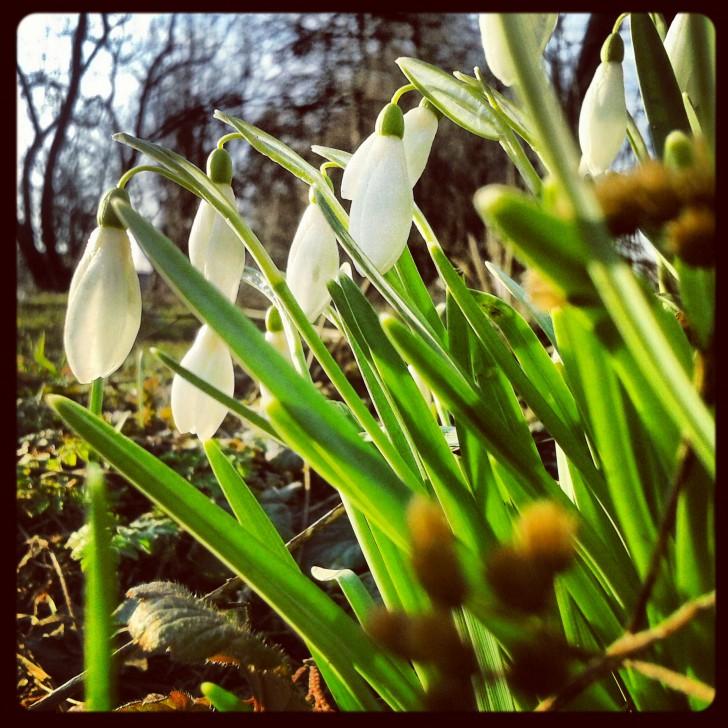 Wiosna, teraz już na pewno