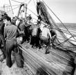 Pescadores, fotograf�a blanco y negro