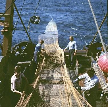 Reti da pesca pescatori banca di immagini gente pescatori