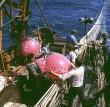 Pescadores, barco de pesca, Wla 307