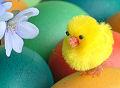 Wielkanoc, fotografie wielkanocne