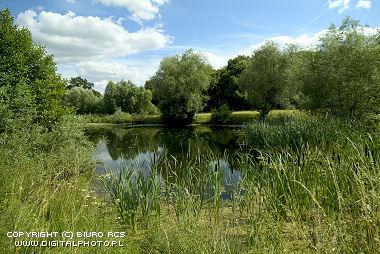 Liten, innsjø , fotoarkiv