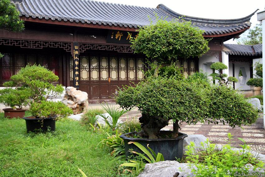 Jardines chinos Fotos de China