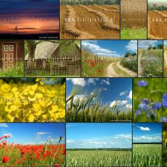 Polska wieś, widoki i krajobrazy